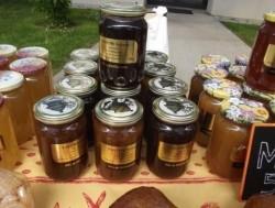 Fauché Sylvette miel